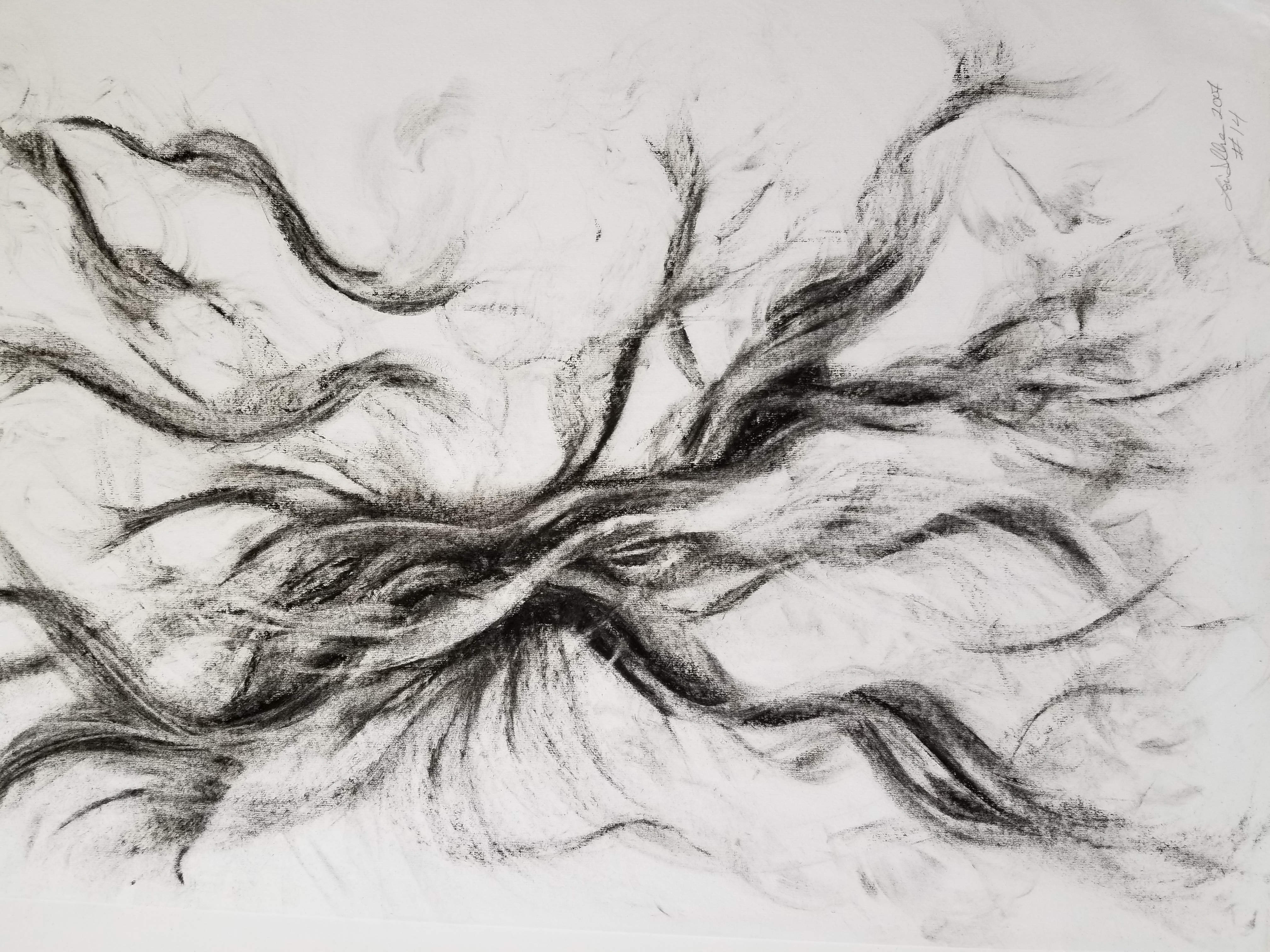 A Study of Charcoal on Rice Paper