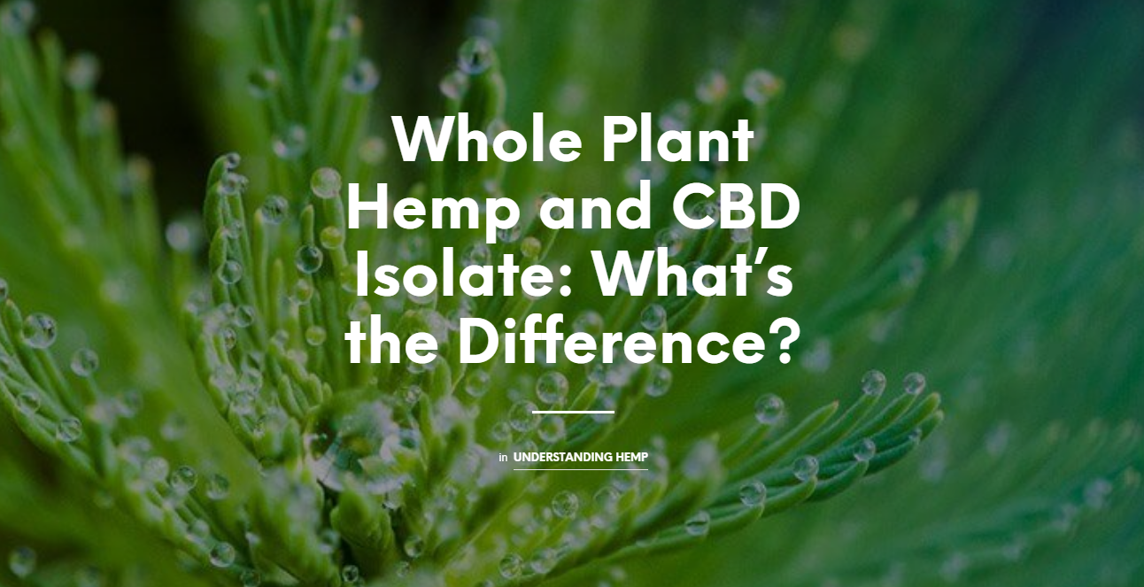 Whole Plant Hemp and CBD Isolate: What's the Difference?