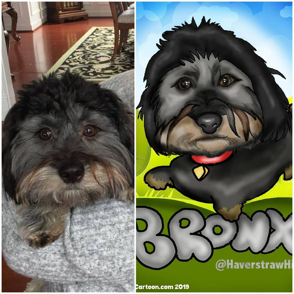 Nashville Caricatures Digital Pet Caricatures