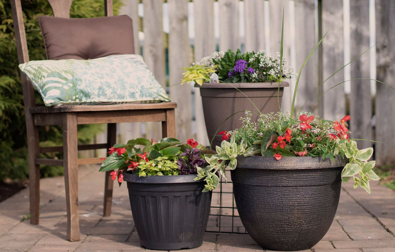 Hanging baskets and color bowls at Flower Wagon in Lititz, PA