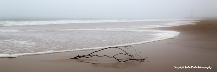Branch and Surf, Ocean City Maryland