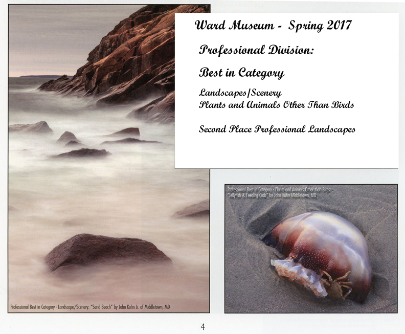 Ward Museum Publication Spring 2017