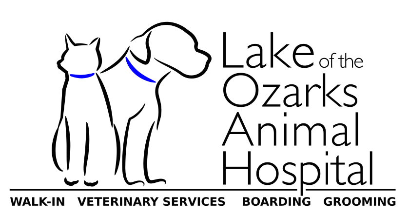 Lake of the Ozarks Animal Hospital